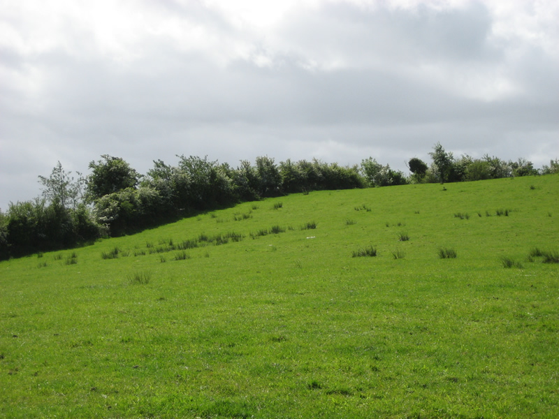 Oakman Hill, Glenavy